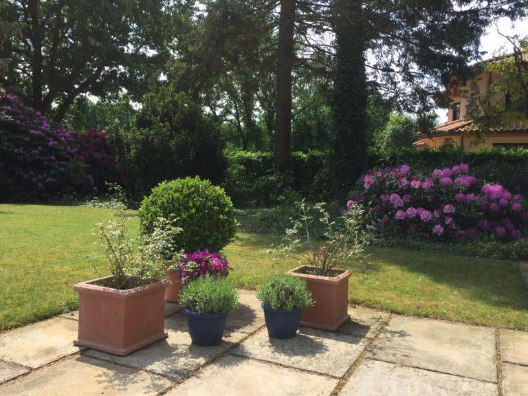 Provence Garten Bremen Mediterrane Pflanzeneu Gmbh